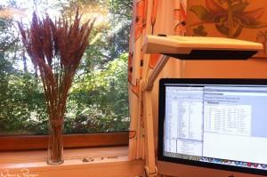 Min nuvarande arbetsplats. Dekorerat den med lite bergrör (Calamagrostis epigeios).